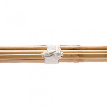 SHINAI KENSHIN 39